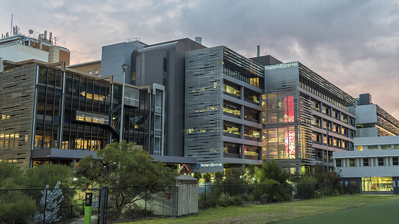 In focus: Walter and Eliza Hall Institute of Medical Research